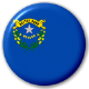 Nevada State Flag 25mm Pin Button Badge